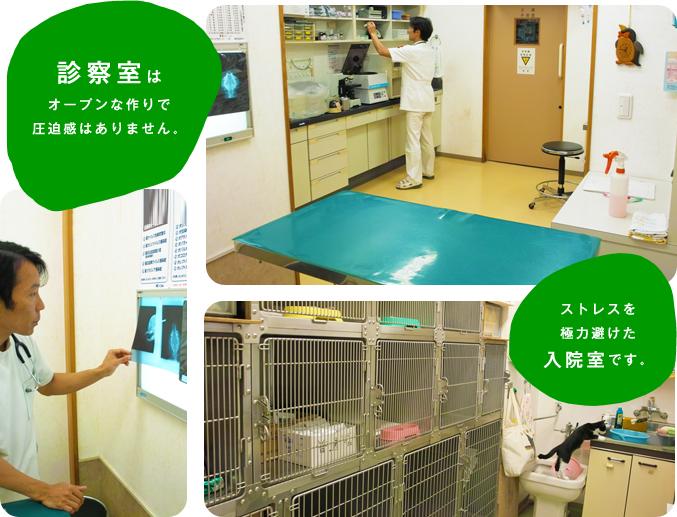 診察室・入院室